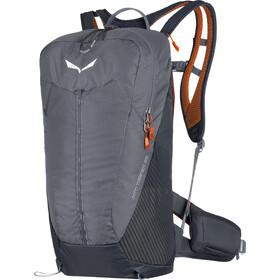 SALEWA MTN Trainer 25 Plecak, szary